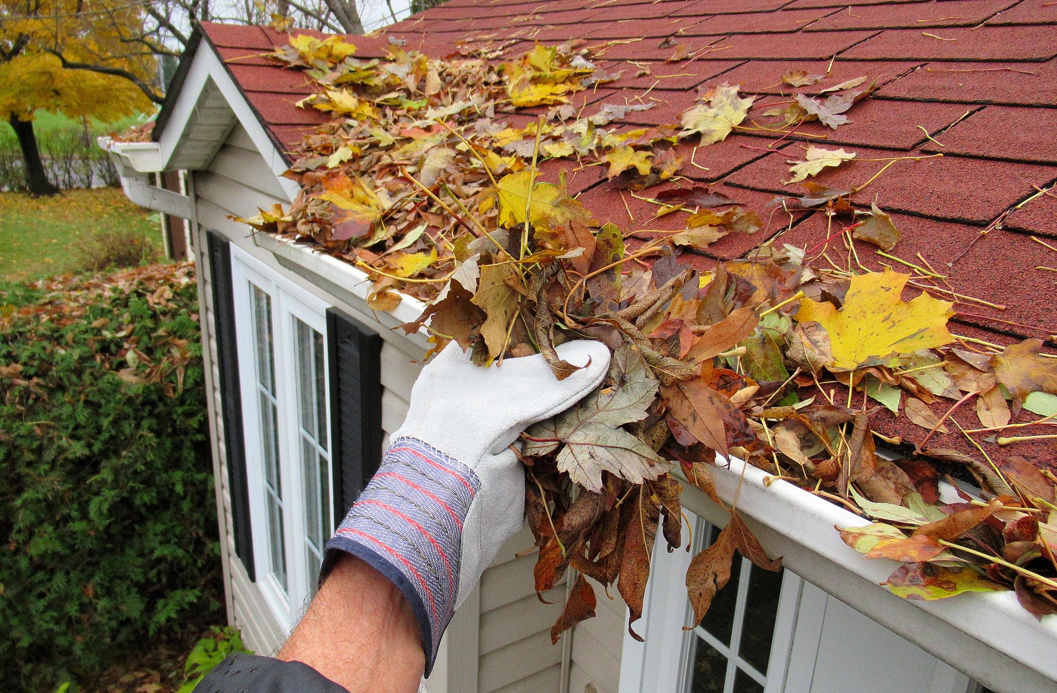 Fall Home Maintenance – Exterior